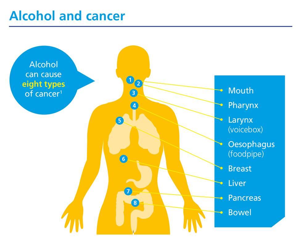 alcohol damages dna and increases cancer risk အရက္ေၾကာင့္ ကင္ဆ